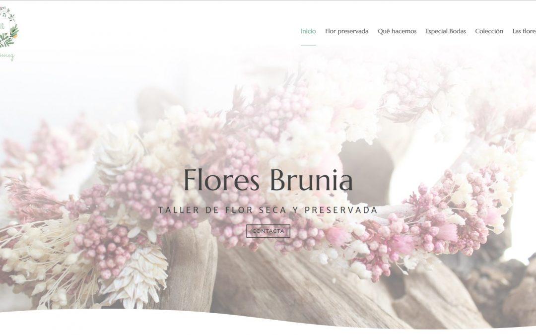 FLORES BRUNIA – TALLER DE FLOR PRESERVADA
